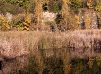 jesien_44